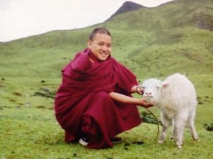 Venerable Geshe Pema Tshering spiritual teacher Land of Compassion Buddha Edmonton Tibetan Buddhist centre picture 7